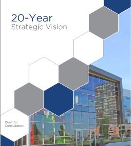20 year plan